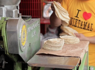 Discovering Fresh Tortillas in Puerto Escondido